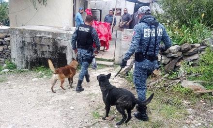 Con apoyo de drones, perros policía y ciudadanos,  localizan con vida a desaparecido en Huichapan