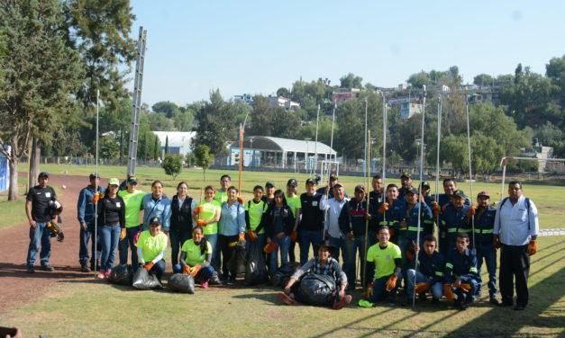 Retiran heno motita de árboles en Unidad Deportiva de Tul